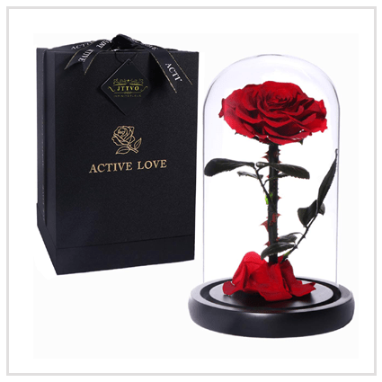 Beauty and the Beast Rose- Valentine's day Roses 2020 UK