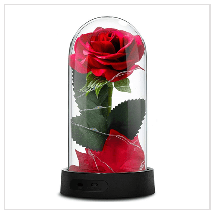Enchanted Rose Red- Valentine's day 2020 Roses for Couple in the UK
