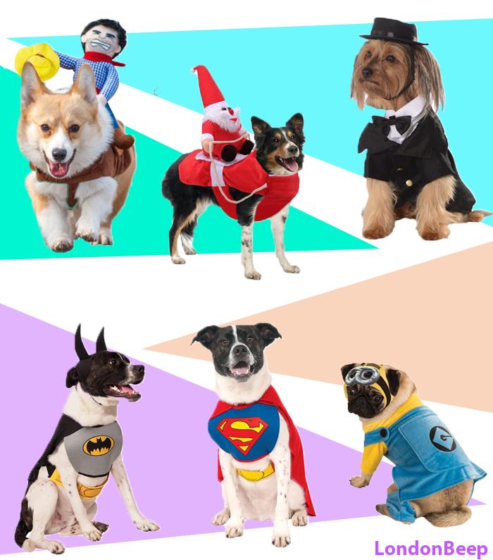 Cool Dog Costumes Gift Ideas UK 2021 London